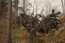 Video: Opus Rides in the Fall