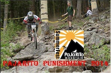 Pajarito Punishment DH