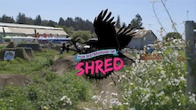 The Sisterhood of Shred - Kickstarter