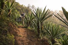 Costa Rica, the Ultimate Winter Escape - Video
