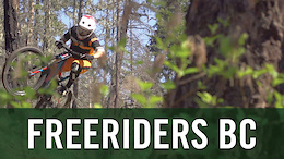 Freeriding Through a Burnt Out Forest - Video