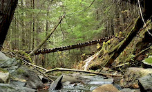 Rilor Wilderness Part 2