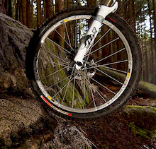 Specialized Clutch SX Tires - Review