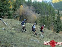 Calgary Mountain Unipsychos